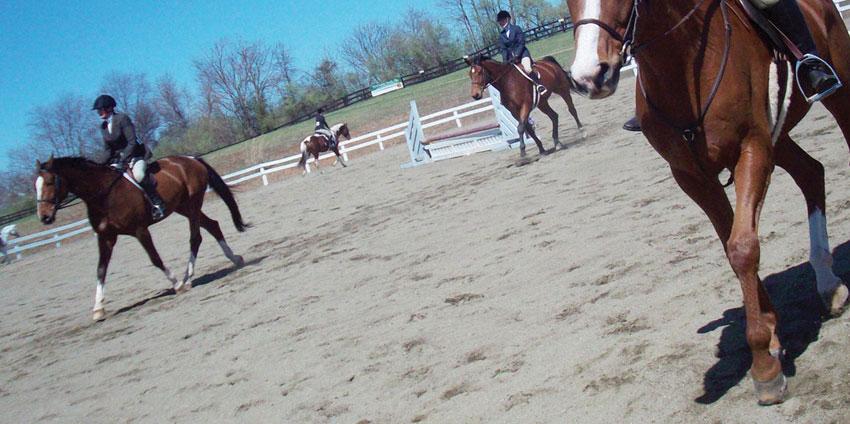 consolidamento-sottofondi-equestri