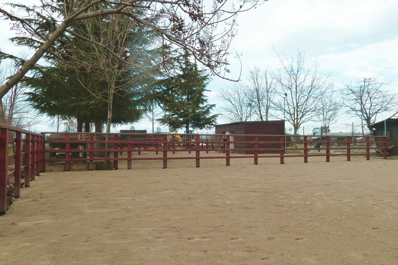 consolidamento-sottofondi-equestri-daliform